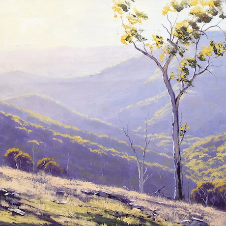 (CreativeWork) Mountain landscape afternoon light gum trees by Graham Gercken. Oil Paint. Shop online at Bluethumb.