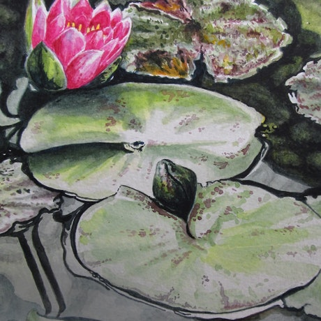 (CreativeWork) Serenity - Water Lilies by Jillian Crider. Watercolour Paint. Shop online at Bluethumb.
