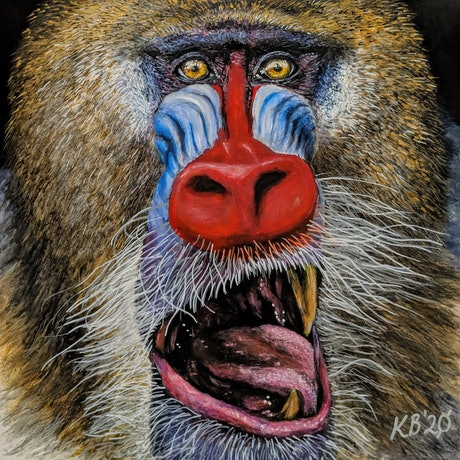 (CreativeWork) Mandrill by Kelly Batsiokis. Mixed Media. Shop online at Bluethumb.