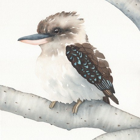 (CreativeWork) Kookaburra sits in the Old Gum Tree – Watercolour A3 by Clare McCartney. Watercolour Paint. Shop online at Bluethumb.