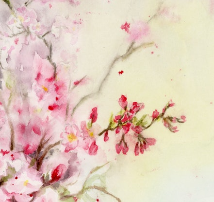 (CreativeWork) Blossoms by Cecilia Xiao. Watercolour Paint. Shop online at Bluethumb.