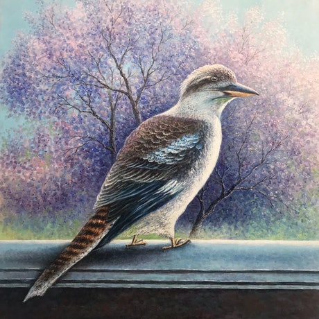 (CreativeWork) kookaburra  by Alex Mo. Oil Paint. Shop online at Bluethumb.
