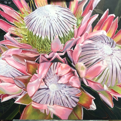 (CreativeWork) Pink Proteas by Bernadette McConville. Oil Paint. Shop online at Bluethumb.