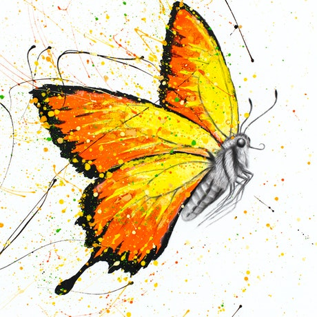(CreativeWork) Warm Summer Butterfly  by Ashvin Harrison. Acrylic Paint. Shop online at Bluethumb.