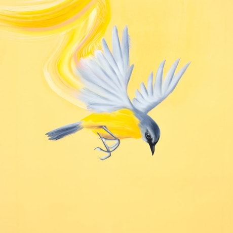 (CreativeWork) Seize the day by Maria Harding. Oil Paint. Shop online at Bluethumb.