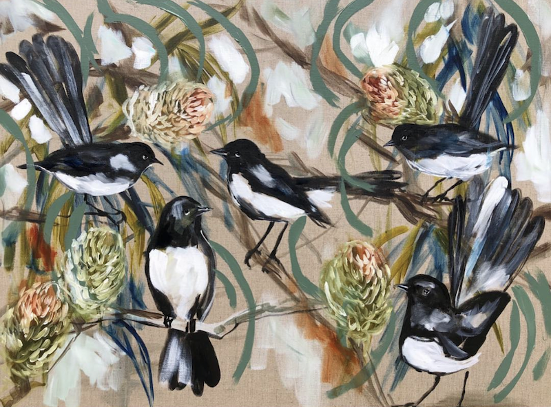 (CreativeWork) Willy wagtails and banksia  Ed. 1 of 10 by Amanda Brooks. Print. Shop online at Bluethumb.