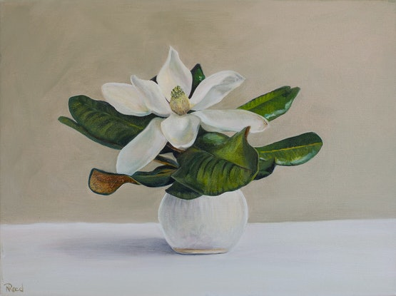 (CreativeWork) Kim's Magnolia by Nicole Reed. Oil Paint. Shop online at Bluethumb.