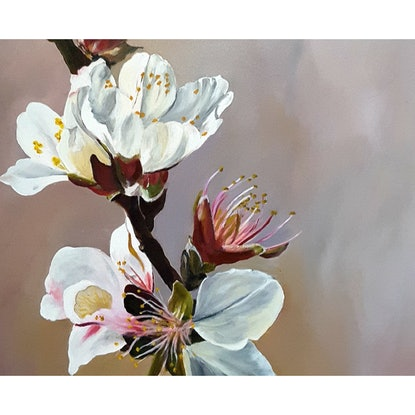 (CreativeWork) ALMOND BLOSSOMS by MERON SOMERS. Acrylic Paint. Shop online at Bluethumb.