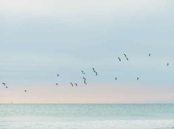 (CreativeWork) Down by the seaside Ed. 1 of 5 by Wendy Philip. Photograph. Shop online at Bluethumb.