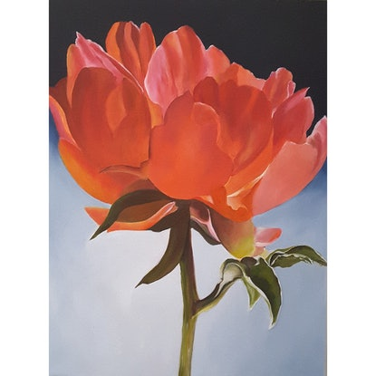 (CreativeWork) PEONY BLOSSOM by MERON SOMERS. Acrylic Paint. Shop online at Bluethumb.