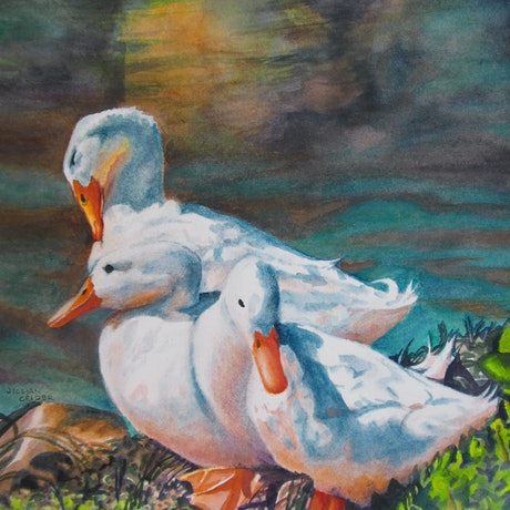 (CreativeWork) All My Ducks In A Row  by Jillian Crider. Watercolour Paint. Shop online at Bluethumb.