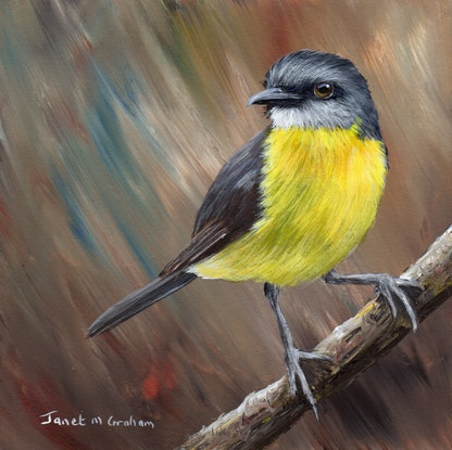 (CreativeWork) Eastern Yellow Robin  by Janet Graham. Acrylic Paint. Shop online at Bluethumb.