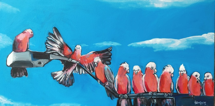 (CreativeWork) Galahs    by Rebecca Read. Oil Paint. Shop online at Bluethumb.