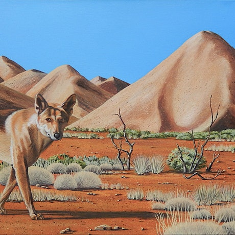 (CreativeWork) Coober Pedy Dingo by Tony Beckley. Acrylic Paint. Shop online at Bluethumb.