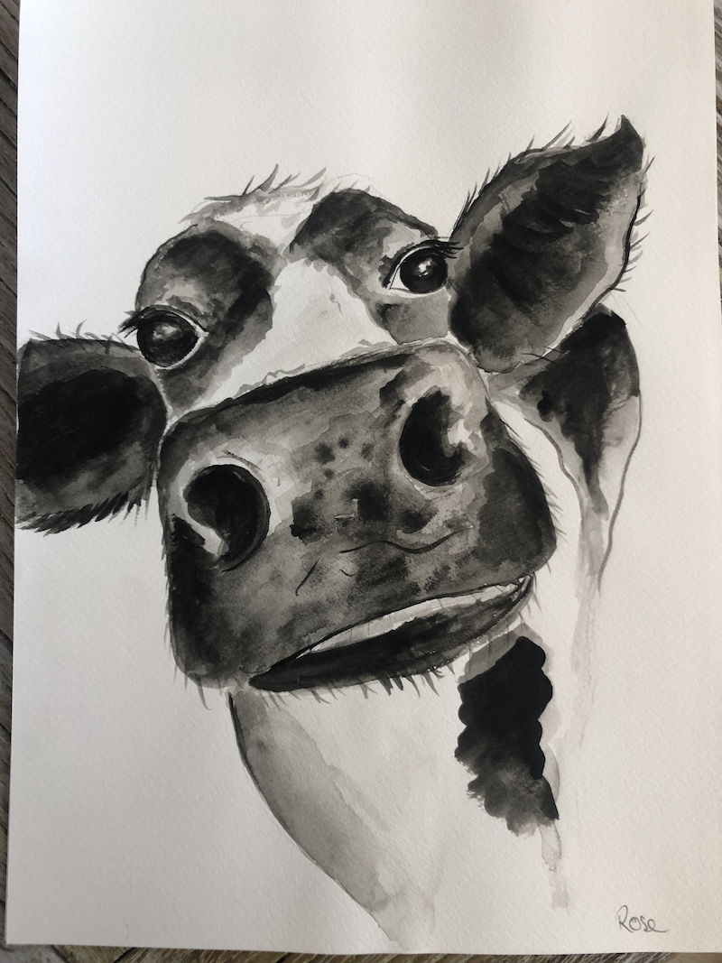 (CreativeWork) Cow wash  x2 Ed. 2 of 10 by Rose Goodwin. Print. Shop online at Bluethumb.