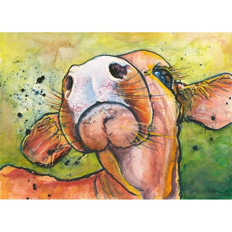 (CreativeWork) Curious Calf  Ed. 4 of 100 by Eileen Scrymgeour Rigby. Print. Shop online at Bluethumb.