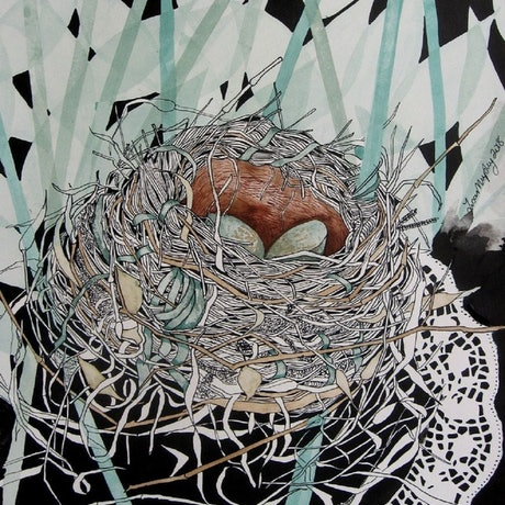 (CreativeWork) Blackbird's nest by Lisa Murphy. Drawings. Shop online at Bluethumb.