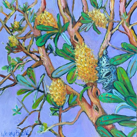 (CreativeWork) Banksia 2 by Wendy Bache. Oil Paint. Shop online at Bluethumb.