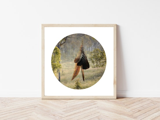 (CreativeWork) Something borrowed #3: objects, landscape, memory   Ed. 2 of 10 by LeAnne Vincent. Photograph. Shop online at Bluethumb.