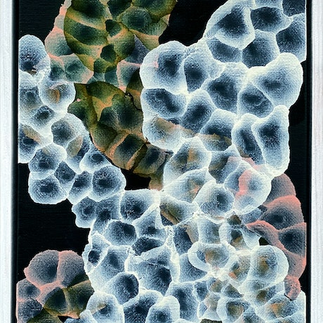 (CreativeWork) Bio Bloom Darkfield IV – Framed Original Abstract Painting by Jacquelyn Stephens. Acrylic Paint. Shop online at Bluethumb.