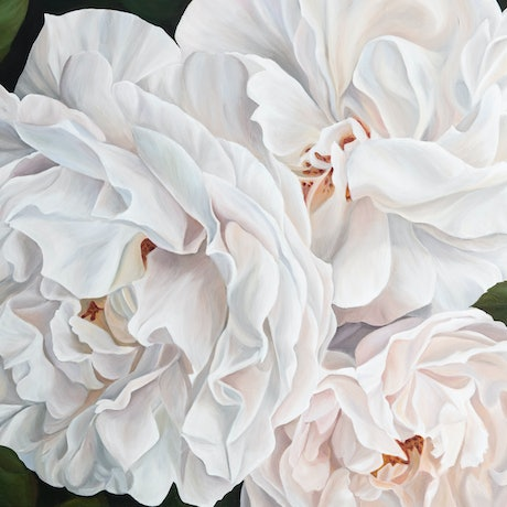 (CreativeWork) Halcyon Cottage Roses by Selenia Costanzo. Acrylic Paint. Shop online at Bluethumb.