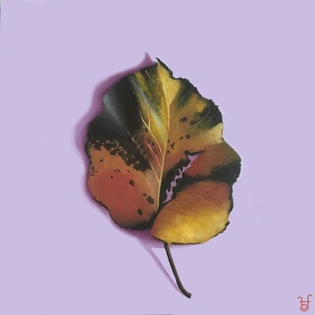 (CreativeWork) Autumn leaf on lilac by Barbara Harkness. Oil. Shop online at Bluethumb.