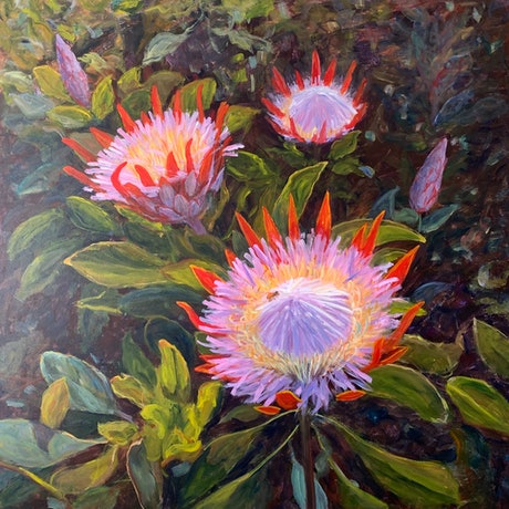 (CreativeWork) Protea Little prince by Shelly Du. Acrylic Paint. Shop online at Bluethumb.