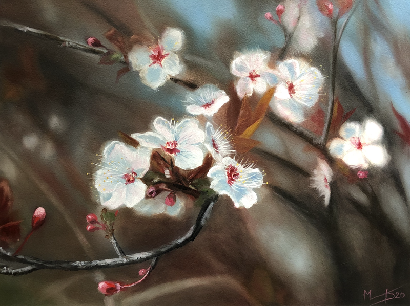 (CreativeWork) Pear Blossom by Melissa Kenihan. Oil Paint. Shop online at Bluethumb.