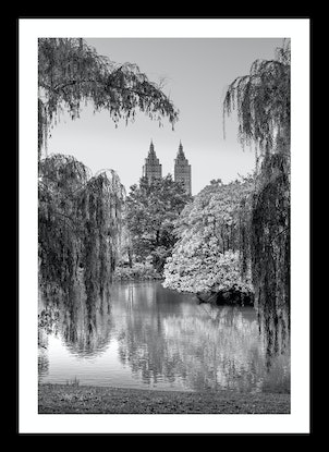 (CreativeWork) Central Park in Monochrome Ed. 8 of 200 by Nick Psomiadis. Photograph. Shop online at Bluethumb.