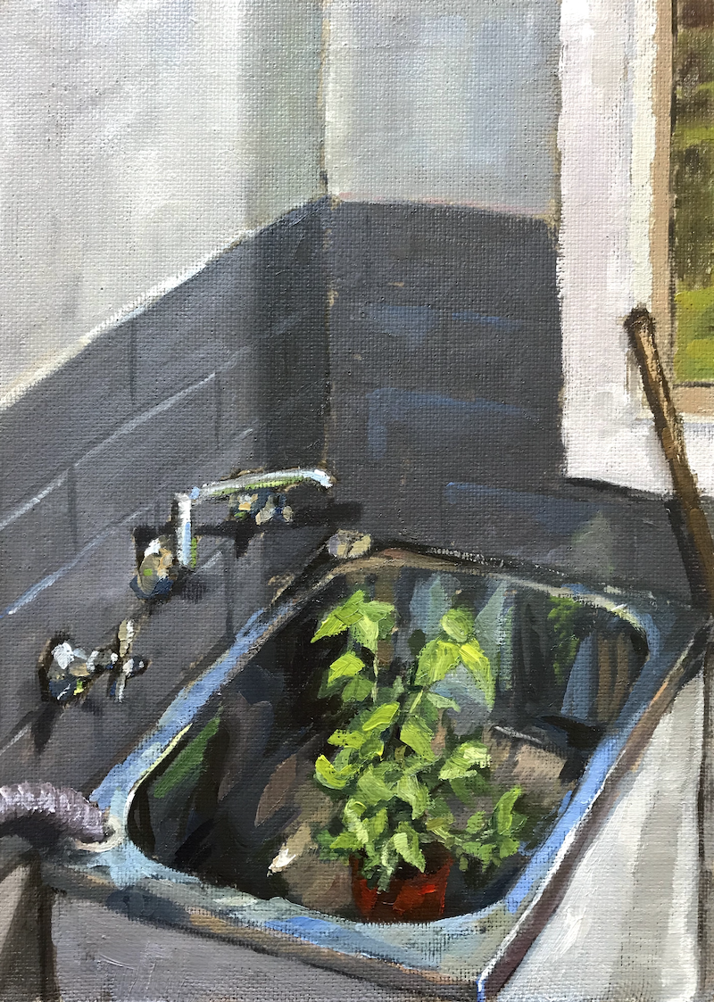 (CreativeWork) Basil in the laundry sink by James Needham. Oil Paint. Shop online at Bluethumb.