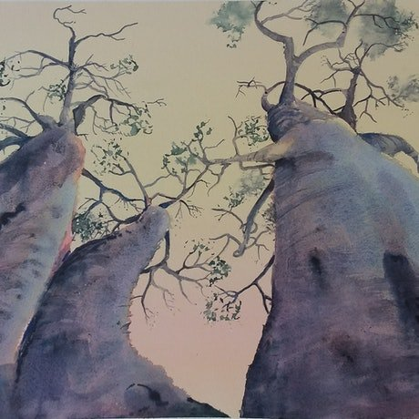 (CreativeWork) Strange Fruit - Boabs by Jill Rogers. Watercolour Paint. Shop online at Bluethumb.