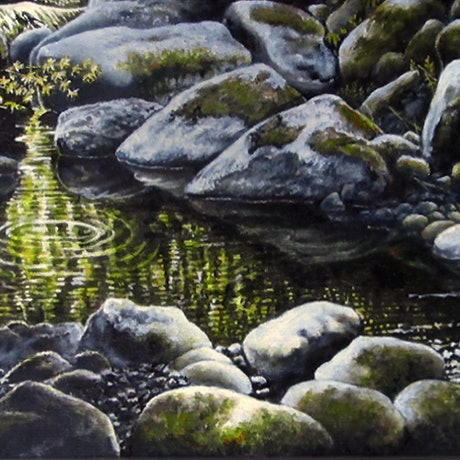 rocky creek with peaceful water reflections