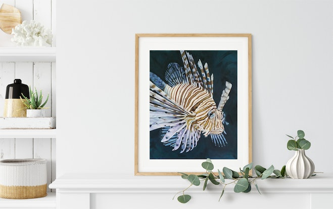 (CreativeWork) Lionfish Print - Allure  Ed. 8 of 100 by Naomi Veitch. Print. Shop online at Bluethumb.