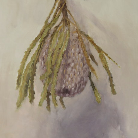 (CreativeWork) Dried Banksia by Jemma Cakebread. Oil Paint. Shop online at Bluethumb.