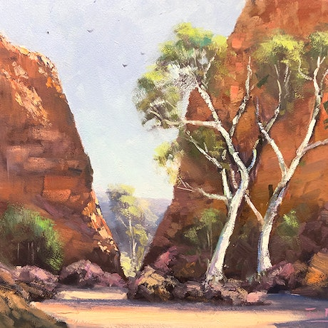 (CreativeWork) Ghost Gums, Simpsons Gap by John Rice. Oil Paint. Shop online at Bluethumb.