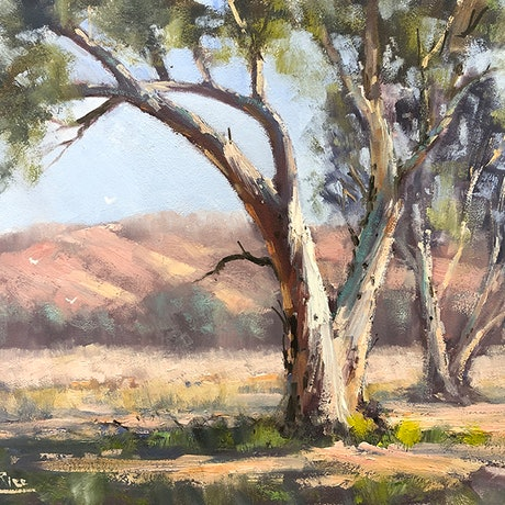 (CreativeWork) In The Macdonnell Ranges by John Rice. Oil Paint. Shop online at Bluethumb.