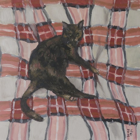 (CreativeWork) Cat by Jemma Cakebread. Oil Paint. Shop online at Bluethumb.