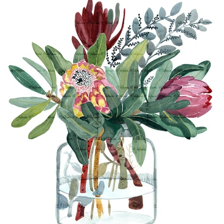 (CreativeWork) Proteas in Glass Jar 2018 Ed. 2 of 100 by Sally Browne. Print. Shop online at Bluethumb.