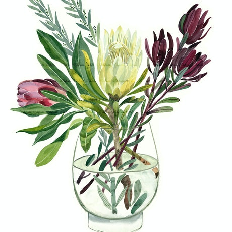 (CreativeWork) Proteas and Leucadendrons 2019  Ed. 2 of 100 by Sally Browne. Print. Shop online at Bluethumb.