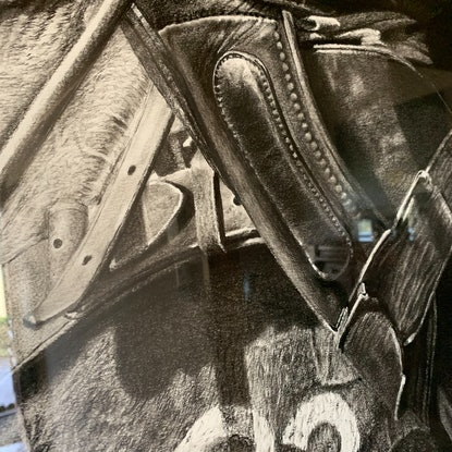 (CreativeWork) POLO by Lew Brennan. Drawings. Shop online at Bluethumb.