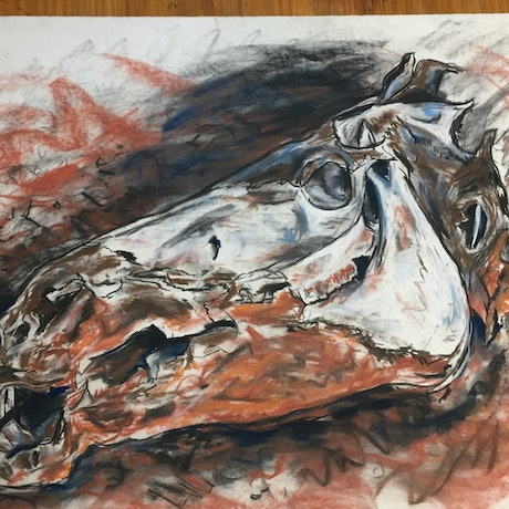 (CreativeWork) Horse Skull by Steven Firman. Mixed Media. Shop online at Bluethumb.
