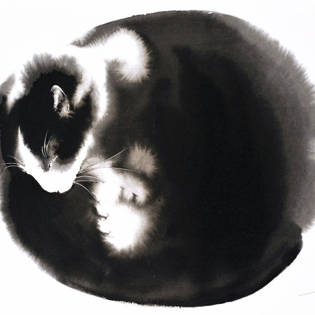 (CreativeWork) Kitty Ball of Fur2 by Soo Beng Lim. Drawings. Shop online at Bluethumb.