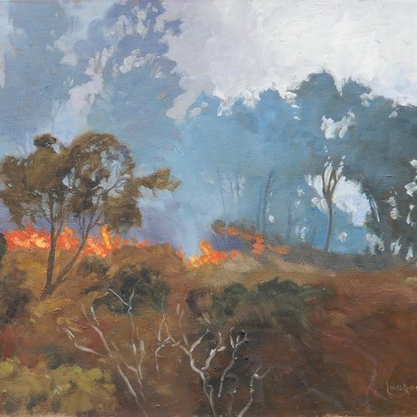 (CreativeWork) Bushfire, Hayman Island by Lance Ross. Oil Paint. Shop online at Bluethumb.