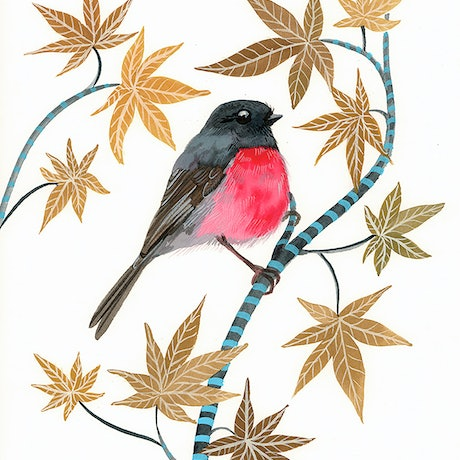 (CreativeWork) Pink Robin and Japanese Maple by Sally Browne. Watercolour Paint. Shop online at Bluethumb.