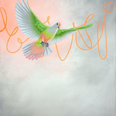 (CreativeWork) Rosie's Adventure no.2 – a flying rose crowned fruit dove bird by Maria Harding. Oil Paint. Shop online at Bluethumb.