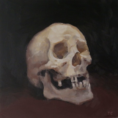(CreativeWork) Skull by Jemma Cakebread. Oil Paint. Shop online at Bluethumb.