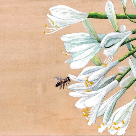 (CreativeWork) Bee with Flowers by Monique Luzza. Acrylic Paint. Shop online at Bluethumb.