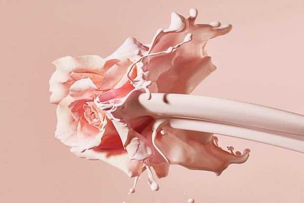(CreativeWork) Pretty In Pink 15. Ed. 1 of 5 by Benjamin Cole. Photograph. Shop online at Bluethumb.