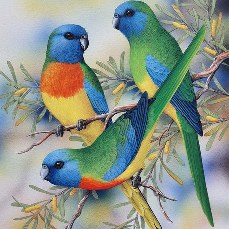 (CreativeWork) Scarlet-chested Parrots by Lyn Cooke. Watercolour Paint. Shop online at Bluethumb.