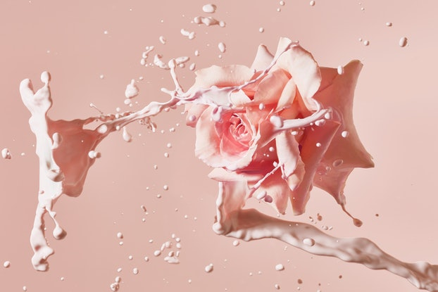 (CreativeWork) Pretty In Pink 14. Ed. 6 of 10 by Benjamin Cole. Photograph. Shop online at Bluethumb.